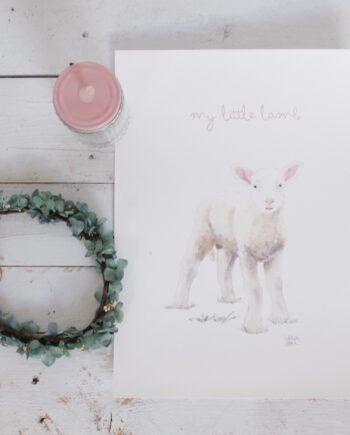 Ilustración corderito / ovejita