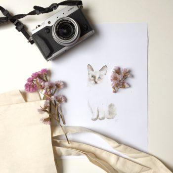 ilustración gata