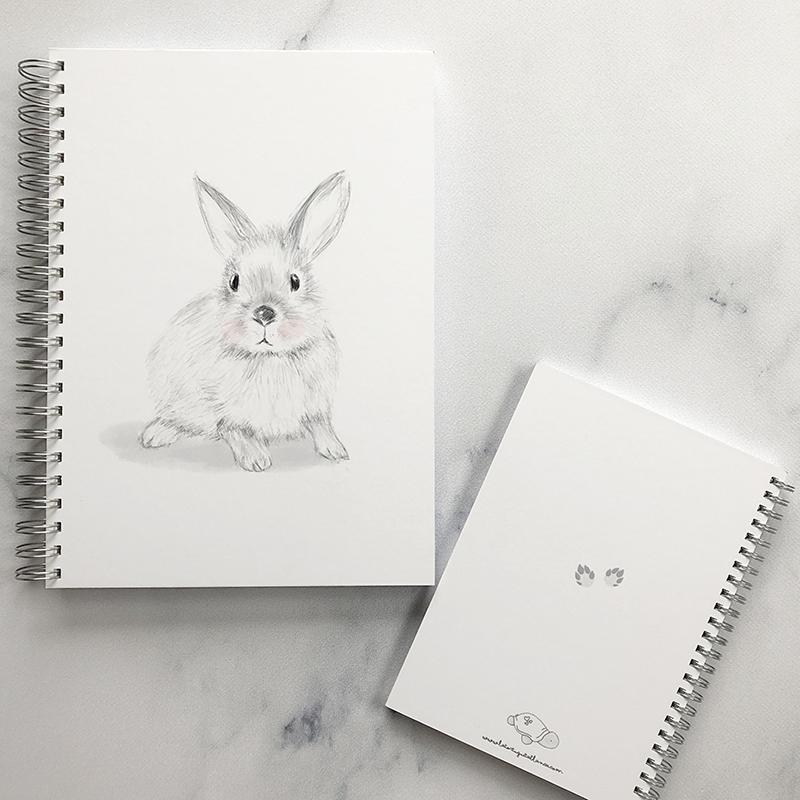cuadernoConejitoOtto2