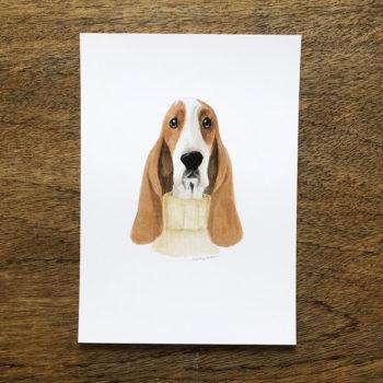basset hound by la tortuguita blanca