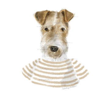 fox terrier by la tortuguita blanca