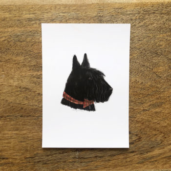 scottish terrier by la tortuguita blanca