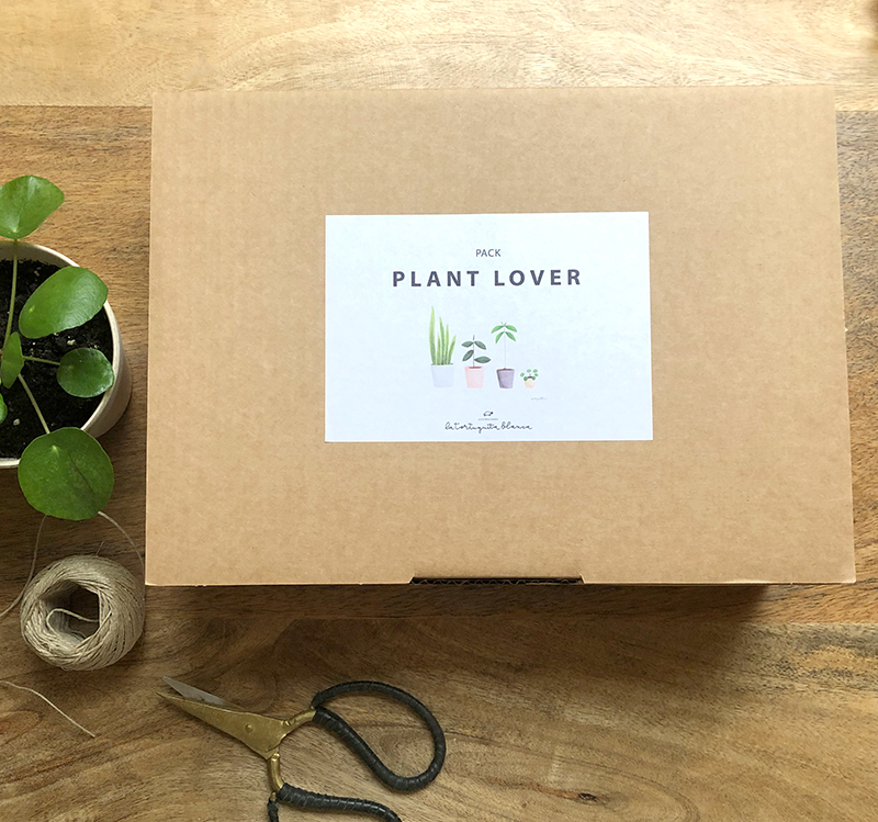 pack-plant-lover-caja-1