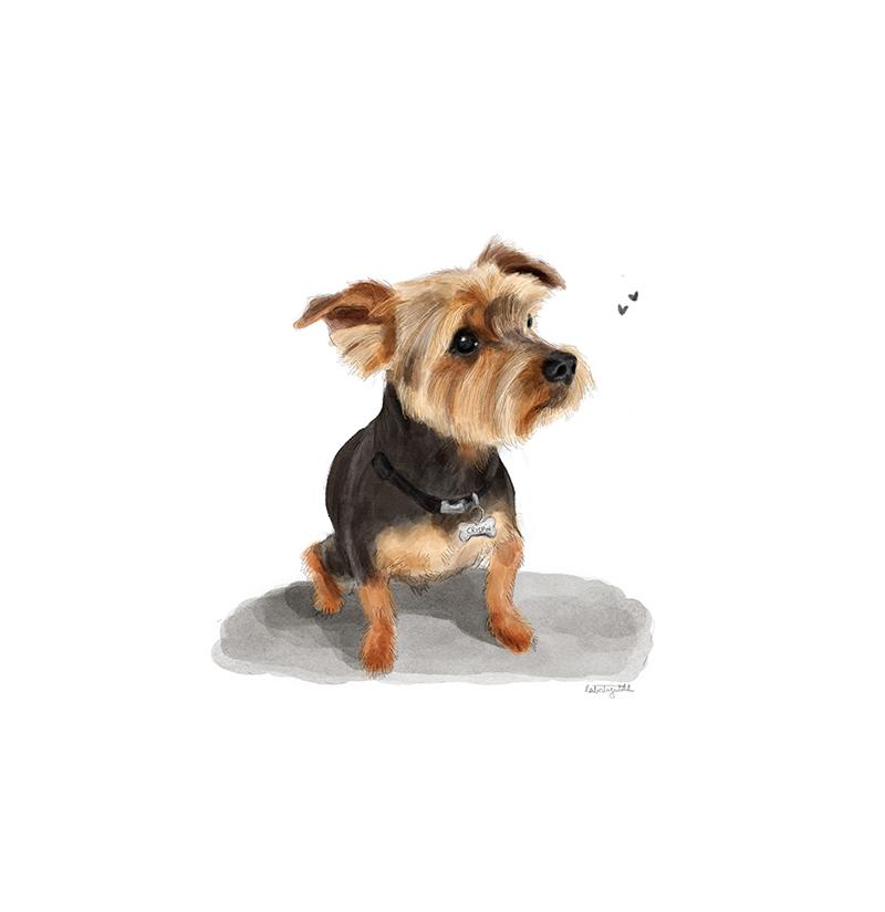 Retrato mascota